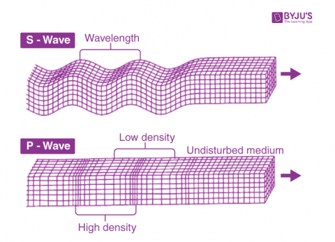 What is P Wave?